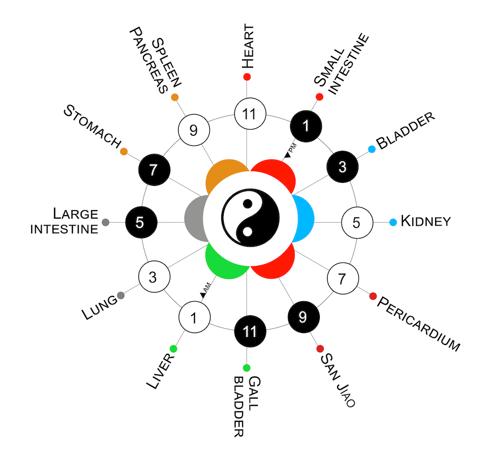 Chinese medicine clock illustration